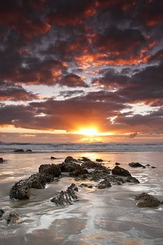 13 stunning sun, sky and sea photos for inspiration - sunrise at emerald beach, new south wales, australia Beautiful Sunset, Beautiful World, Beautiful Places, Beautiful Pictures, Sea Photo, Belleza Natural, Amazing Nature, Beautiful Landscapes, Wonders Of The World