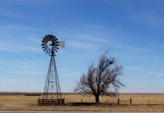 West Texas windmills | Amarillo Globe-News