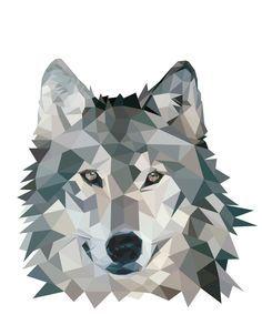 wolf illustration - Google 검색