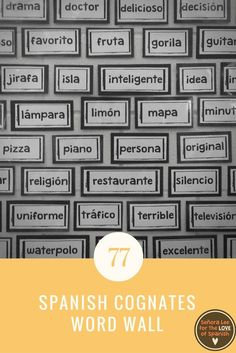 Great visual resource! Build a strong vocabulary with easy to learn Spanish cognates. Big and bold, black and white bricks are easily read from the back of the room. Each brick is 2.5 inches tall with varying lengths. Includes several sentence building wo