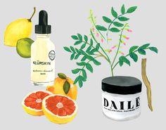 Tips + Tricks: 10 Products to Combat Dryness