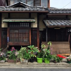 Garden Of Potted Plants Kyoto