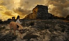 Tom Chambers is a photographer