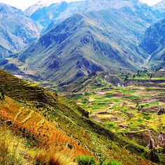 Colca Valley Peru!! I can't wait to go!!
