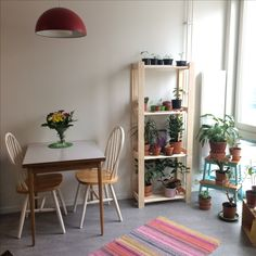 Retro home ideas inspiration, 38 kvm appartement, perstorp table, kitchen table, pinchairs, albert shelf from ikea, retro lamp