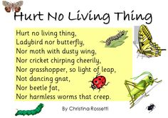Christina Rosetti's poem - lovely as part of learning about minibeasts and to discuss caring for creatures