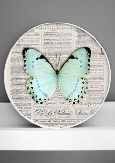 Blue butterfly framed wall decor  3D collage  by DigitalArtParis, $24.00