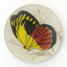 """WT-0500-424 """"Red and Yellow Moth"""""""