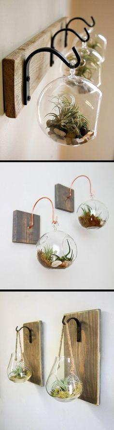 Hanging terrarium ideas for air plants and succulents. A simple yet elegant home decor item to spruce up your living spaces.