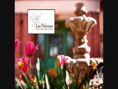 #  Las Palomas, an intimate Inn in historic downtown Santa Fe, New Mexico     http://merchandising.expediaaffiliate.com/campaign/page/?campaignId=60435