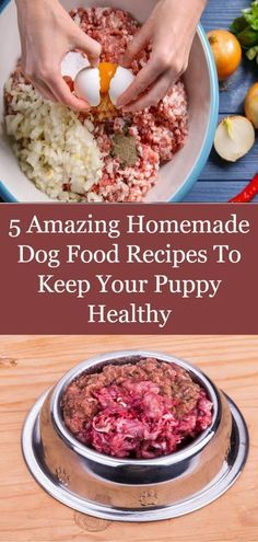 5 Amazing Homemade Dog Food Recipes To Keep Your Puppy Healthy