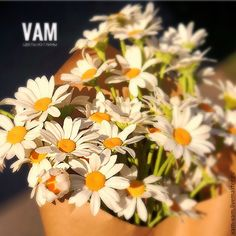"""Купить """"Не гадайте на любовь ,если счастливы глаза"""" - белый, желтый, коричневый, зеленый, ромашки"""