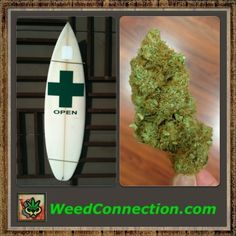 #Follow @WeedConnection #Subscribe @ http://weedconnection.com