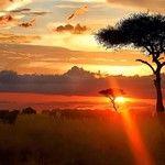 Samburu - Kenya #kenya #africa