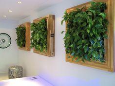 Quadros vivos na sala de estar e jantar.   https://www.homify.com.br/livros_de_ideias/31099/6-maneiras-de-decorar-com-plantas
