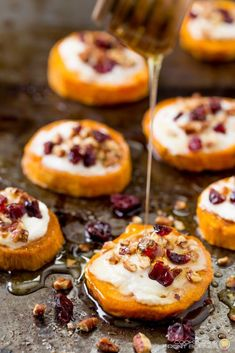 Sweet potato rounds with goat cheese are the perfect easy holiday party appetizer! This sweet potato goat cheese appetizer is beautiful and easy to make topped with creamy goat cheese, crunchy pecans, sweet dried cranberries and drizzled with honey. Thanksgiving Recipes, Holiday Recipes, Dinner Party Recipes, Thanksgiving Table, Christmas Recipes, Tasty, Yummy Food, Appetizer Recipes, Goat Cheese Appetizers