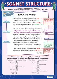 From our English poster range, the Sonnet Structure Poster is a great educational resource that helps improve understanding and reinforce learning. Ap Literature, British Literature, Teaching Literature, Language And Literature, English Literature Notes, Writing Words, Writing Poetry, Poetry Prompts, Writing Tips