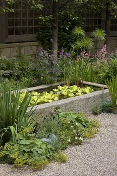 A shallow formal pond is softened by informal planting into the surrounding gravel