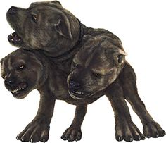 Cerberus: Three headed dog that Orpheus lulled to sleep with his music. Also shown in Harry Potter as Hagrid's pet named Fluffy that Harry and his friends lulled to sleep in Sorcerers Stone with a flute Hagrid had given them Harry Potter Pet Names, Fluffy Harry Potter, Harry Potter Movies, Harry Potter Hogwarts, Classical Mythology, Greek Mythology, High Wallpaper, Dragons, Demon Dog