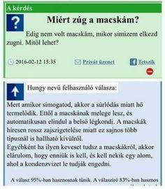 Topviccek.hu - a legjobb viccek gyűjteménye