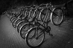 Bicycle by Sylvain Demettre on 500px