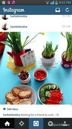... Finland, Plants, Instagram, Planters, Plant, Planting