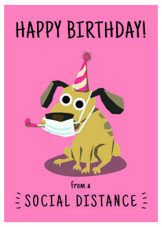 Birthday Jokes, Happy Birthday Wishes Quotes, Happy Birthday Dog, Happy Birthday Pictures, Happy Birthday Greetings, Funny Birthday Cards, Card Birthday, Birthday Ideas, Birthday Invitations