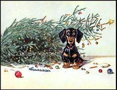 http://www.ebay.com/itm/DACHSHUND-CHRISTMAS-TREE-TROUBLE-CUTE-1930s-EnHanCeD-ViNTAgE-POSTCARD-ART-MAGNET-/150950555330?pt=LH_DefaultDomain_0=item23255aaec2