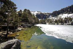 Pinares desconocido - Comarca Pinares | Soria y Burgos | Castilla y León. - Parque natural de la Laguna Negra y los circos glaciares de Urbión