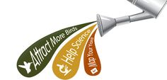 YardMap- Now this is cool.  Put in your zip code and get all kinds of information about birds and habitat in your region.