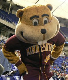 Goldy Gopher is the mascot for the U of Minnesota's sports teams