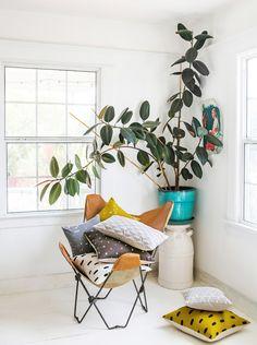 Une grande plante verte pour decorer son interieur