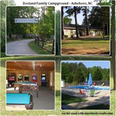 A stopover at Zooland Campground in Asheboro, NC, Nice place but try to reserve in campsites 1 thru 10 for easier leveling. Rv Campgrounds, Tv Station, Camping Spots, Rv Parks, Rv Travel, Campsite, Day Trips, North Carolina, The Good Place
