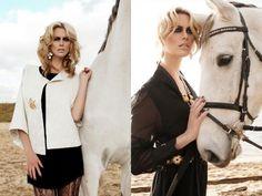 www.pegasebuzz.com   Equestrian photography : Marie Bärsch
