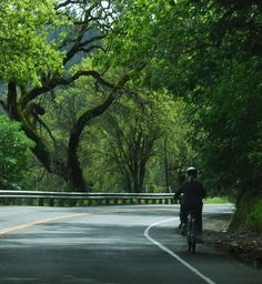 Bicycling on a Shaded Bike Lane, Napa Valley, California