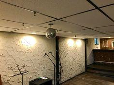 Basement nightclub! Nightclub, Track Lighting, Basement, Real Estate, Ceiling Lights, House, Home Decor, Root Cellar, Decoration Home