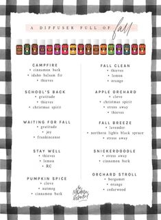 A few of our favorite Young Living Essential Oil Diffuser Blends for the Fall.  As we head back to school we will be diffusing these non-stop this Autumn!