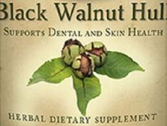 BLACK WALNUT HULL Liquid Herbal Tincture Natural Healthy Teeth Glycohol Extract