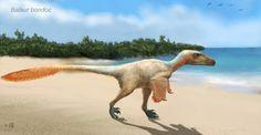 "featheryraptor: """"The Islander"" featuring a Balaur bondoc by ~Taenadoman """