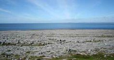Burren Landscape © (Copyright Ingo Mehling and licensed for reuse under this Creative Commons Licence 3)