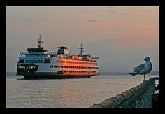 Watching the Ferry in Seattle (by papalars)