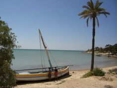 Our New Life In Kerkennah - NO MARMITE IN TUNISIA