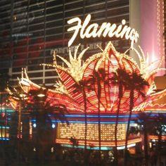 Flamingo Las Vegas Hotel  Casino