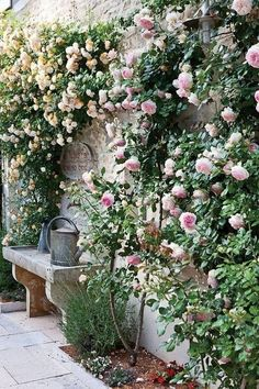 Need some low maintenance garden design ideas? Learn the fundamentals and tips to creating the perfect low mainteance outdoor space in our feature article. Small Courtyard Gardens, Small Courtyards, Courtyard Ideas, Wall Gardens, Low Maintenance Garden Design, The Secret Garden, Small Rose, Garden Seating, Glass Garden