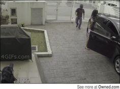 Humiliated Robbers