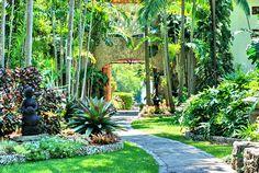coral gables gardens | The Kampong Botanical Garden – Miami Kids Activities, Attractions ...