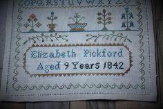 'Elizabeth Pickford 1842' Pineberry Lane