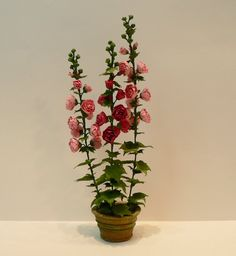 Hollyhocks arranged in a garden pot