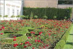 Wunderschöne Rosen im Mirabellgarten - Salzburg, Österreich Stepping Stones, Sidewalk, City, Outdoor Decor, Beautiful, Home Decor, Salzburg Austria, Water Games, Artworks