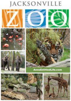 sanford zoo memorial day